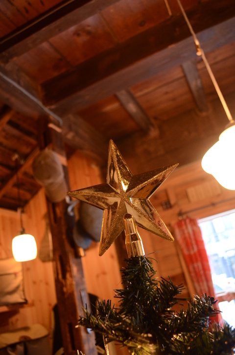 ☆ニャンコと お星さま☆_b0207642_17113568.jpg