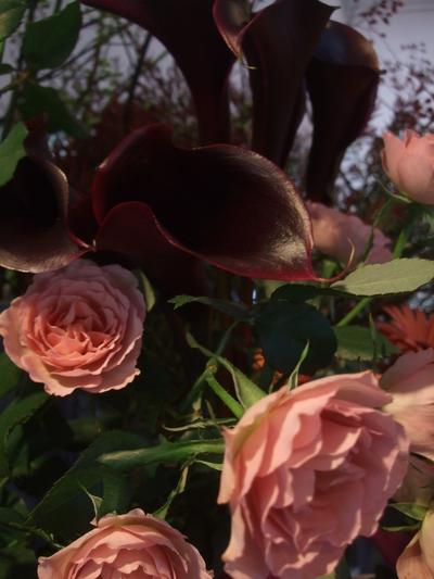 オークリーフ(冬の花たち)_f0049672_11424583.jpg