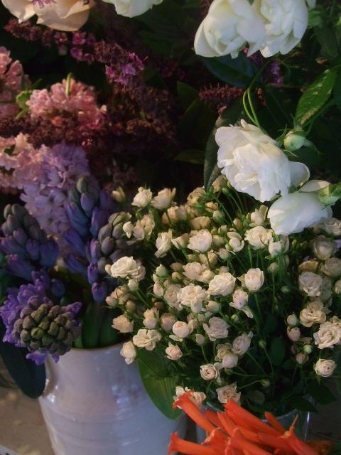 オークリーフ(冬の花たち)_f0049672_11432435.jpg