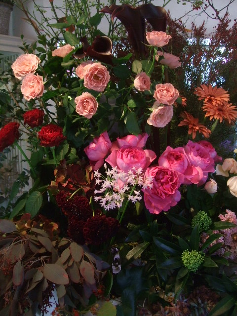 オークリーフ(冬の花たち)_f0049672_11445665.jpg
