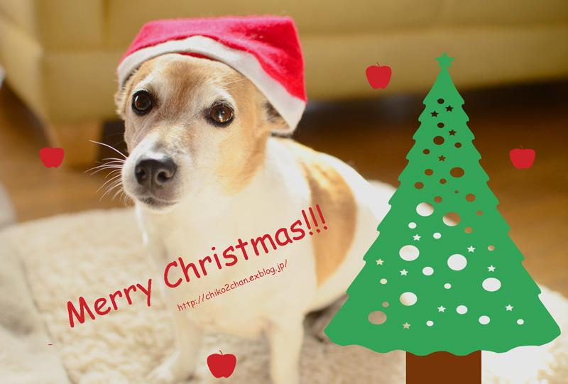 Christmas Post Card ⑫_e0221779_14594711.jpg