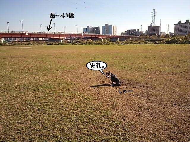 ★無邪気なデビル現る★_d0187891_17213210.jpg