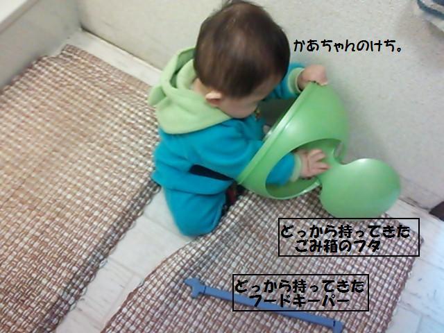 ★無邪気なデビル現る★_d0187891_17231194.jpg