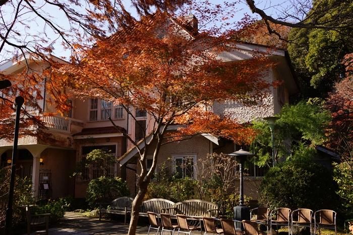 鎌倉に紅葉巡り 浄妙寺の紅葉_b0145398_23424928.jpg