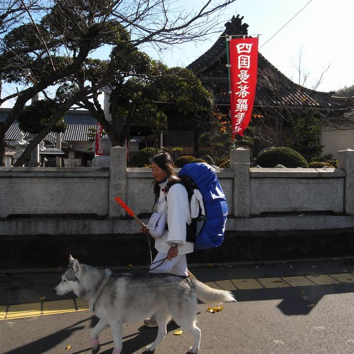 Memory of the second pilgrimage with Husky HANA II_c0049299_1237285.jpg