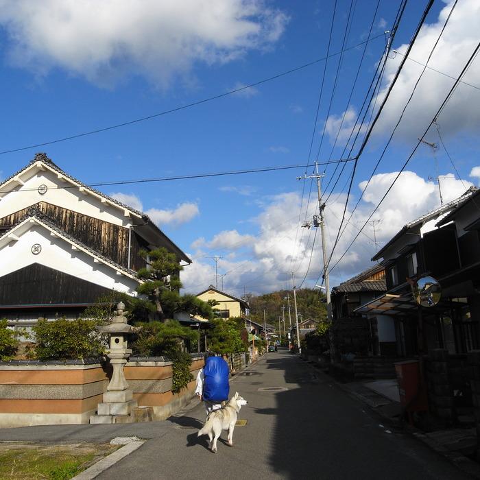 Memory of the second pilgrimage with Husky HANA II_c0049299_1243379.jpg