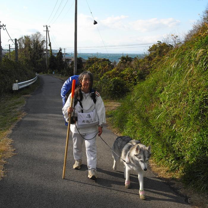 Memory of the second pilgrimage with Husky HANA II_c0049299_12434132.jpg