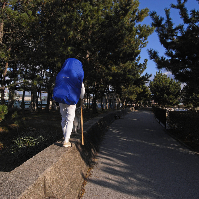 Memory of the second pilgrimage with Husky HANA II_c0049299_12453849.jpg