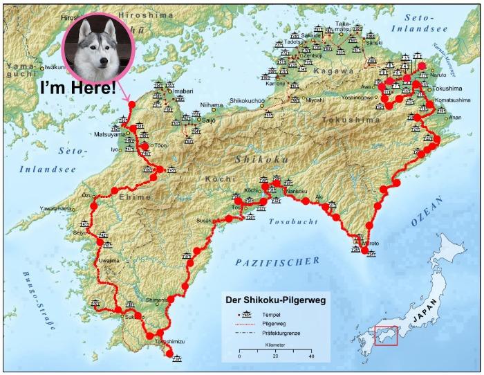 Memory of the second pilgrimage with Husky HANA II_c0049299_1291277.jpg