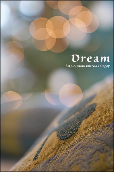 12月の夢_f0100215_0144218.jpg