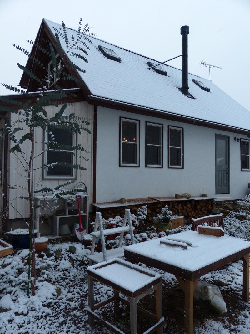 雪です。。_a0288621_1024157.jpg