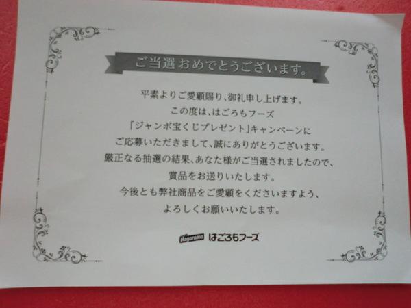 f0140433_11263333.jpg
