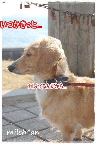 b0115642_22262056.jpg