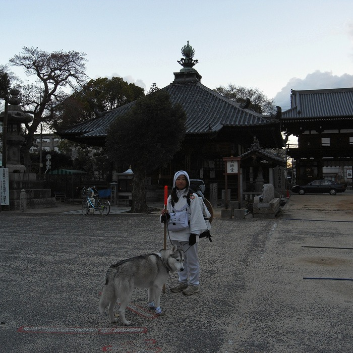 Memory of the second pilgrimage with husky HANA II_c0049299_20293196.jpg