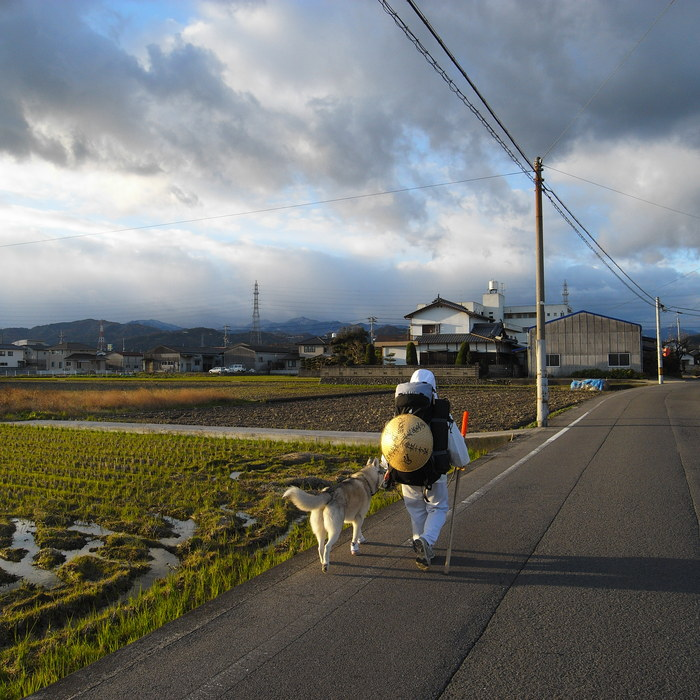 Memory of the second pilgrimage with husky HANA II_c0049299_20422092.jpg