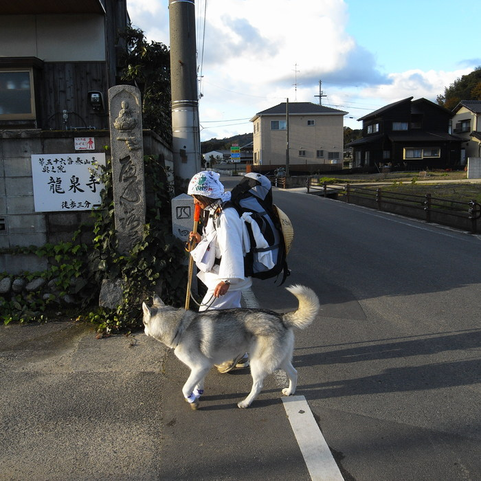 Memory of the second pilgrimage with husky HANA II_c0049299_20473091.jpg
