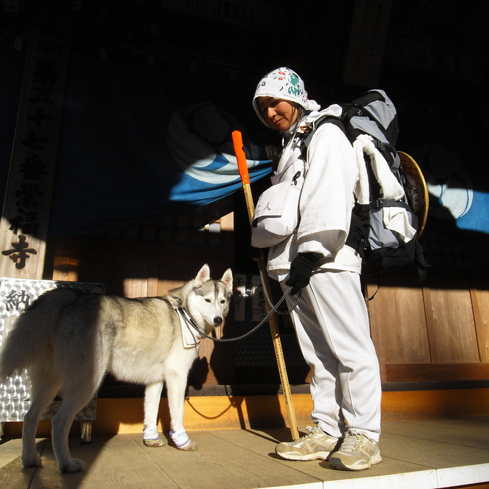 Memory of the second pilgrimage with husky HANA II_c0049299_20521756.jpg