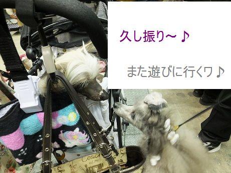 f0179203_2214115.jpg