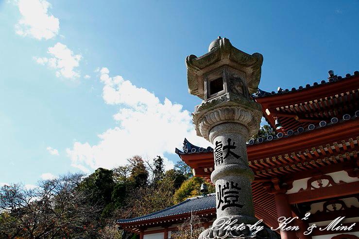 江ノ電散歩 「長谷寺」 編 ♪_e0218518_19403240.jpg