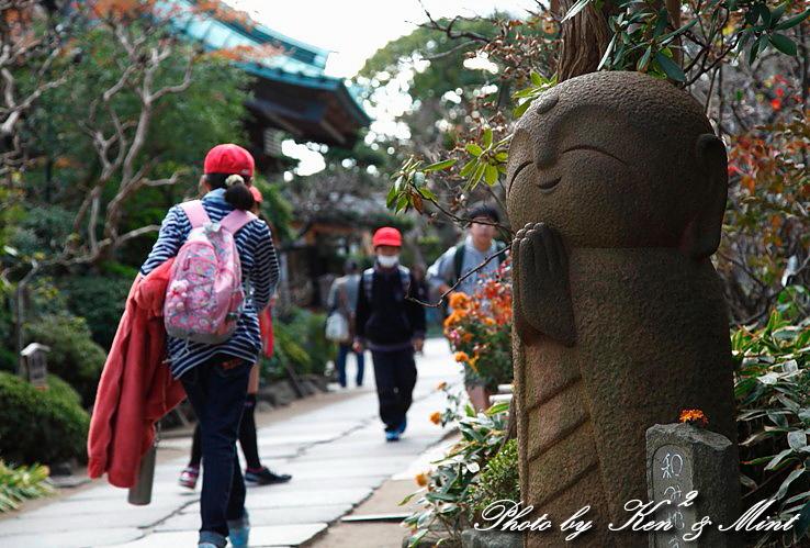 江ノ電散歩 「長谷寺」 編 ♪_e0218518_19404280.jpg