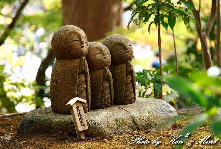 江ノ電散歩 「長谷寺」 編 ♪_e0218518_19405386.jpg