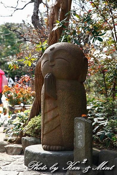 江ノ電散歩 「長谷寺」 編 ♪_e0218518_19411471.jpg