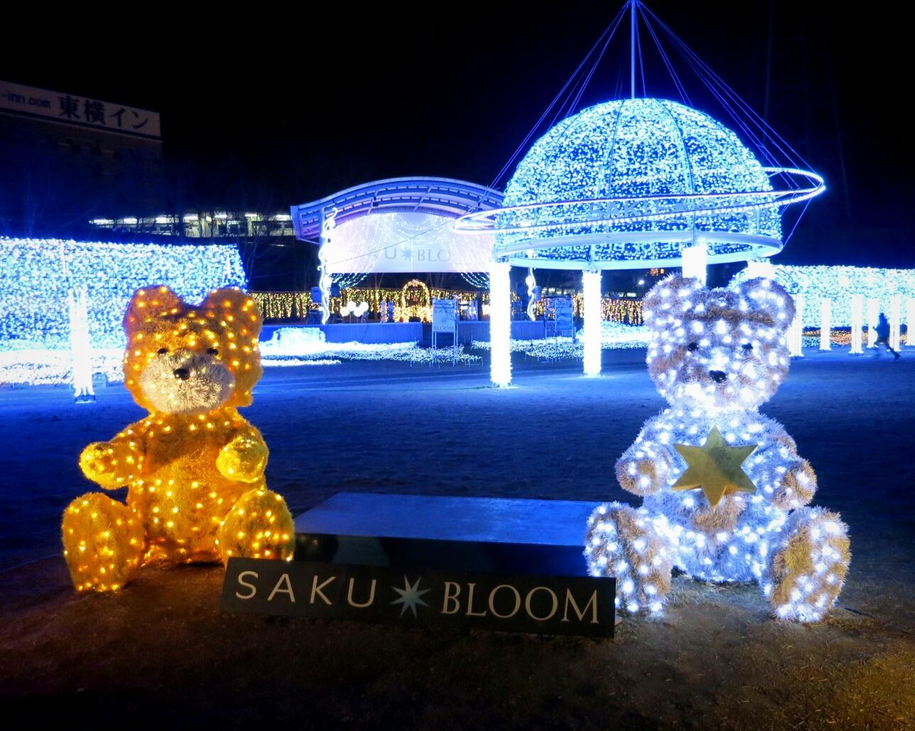 2013☆イルミネーション巡り⑨ SAKU★BLOOM_f0236260_14431640.jpg