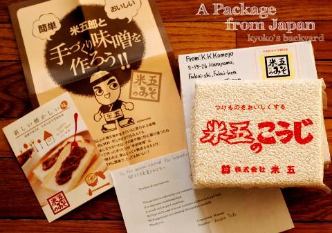 日本からお取り寄せした、米麹 (と、猫の反応)_b0253205_283533.jpg