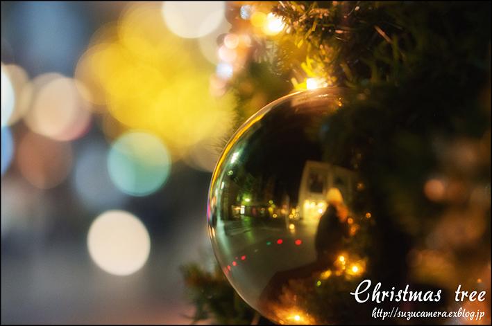 クリスマスツリー_f0100215_2331616.jpg