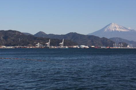 清水港にトリヤマが!!_f0175450_19473155.jpg