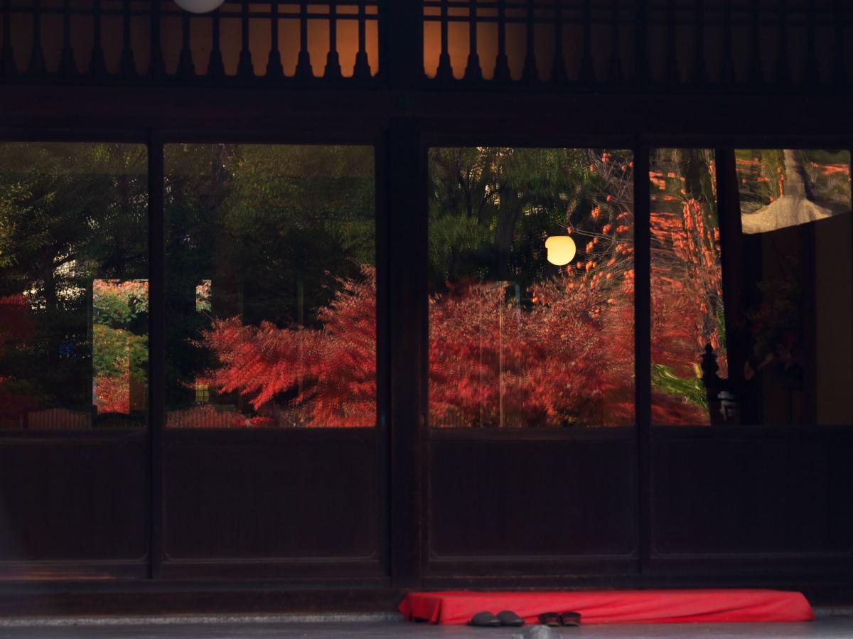 紅葉 2013 <太閤園>            _f0021869_022513.jpg