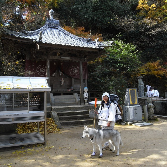 Memory of the second pilgrimage with husky HANA II_c0049299_19251012.jpg