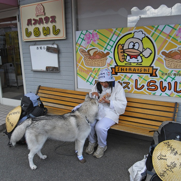 Memory of the second pilgrimage with husky HANA II_c0049299_1927367.jpg