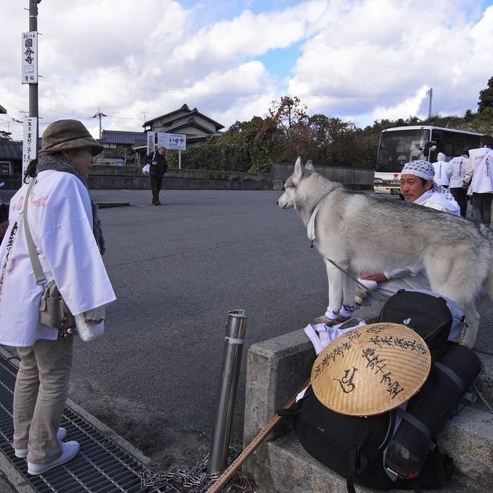 Memory of the second pilgrimage with husky HANA II_c0049299_19291049.jpg