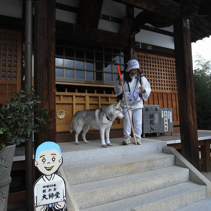 Memory of the second pilgrimage with husky HANA II_c0049299_1931326.jpg