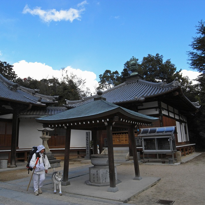 Memory of the second pilgrimage with husky HANA II_c0049299_19314659.jpg
