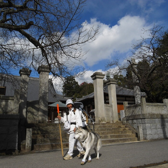 Memory of the second pilgrimage with husky HANA II_c0049299_19323963.jpg
