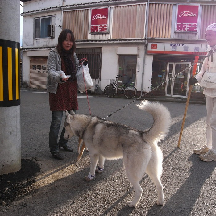 Memory of the second pilgrimage with husky HANA II_c0049299_19372365.jpg