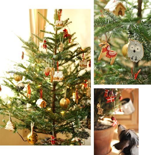 クリスマスの準備_d0174704_23371512.jpg