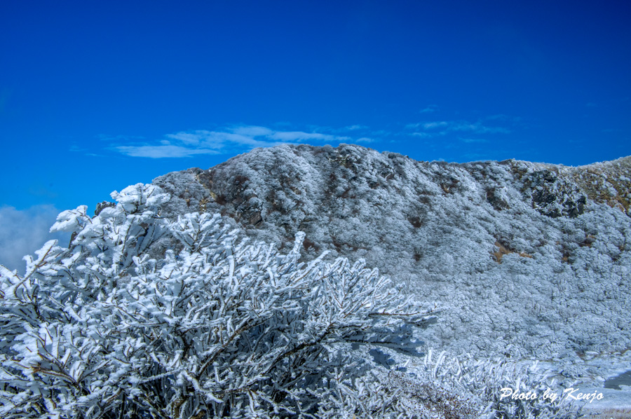 濃霧と暴風と時々絶景の九重・稲星山へ朝駆け。_a0097006_19105358.jpg