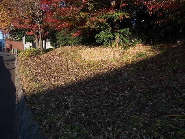 正門前の除草と広場の園路柵の撤去_b0049307_1943341.jpg