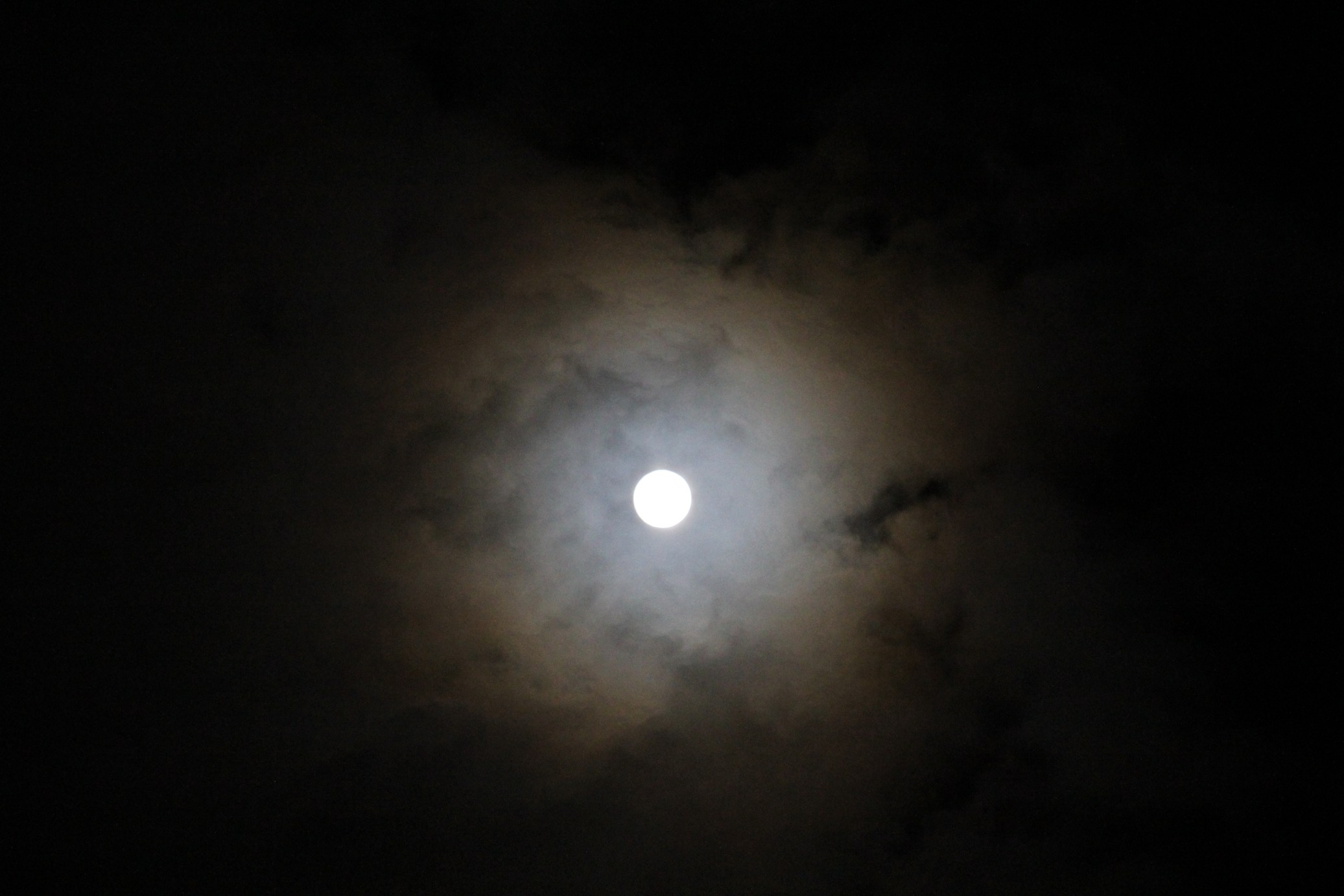 お月さま・・_f0141609_0242690.jpg