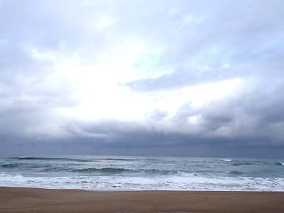 いつもの荒れた海!_c0019338_21998.jpg