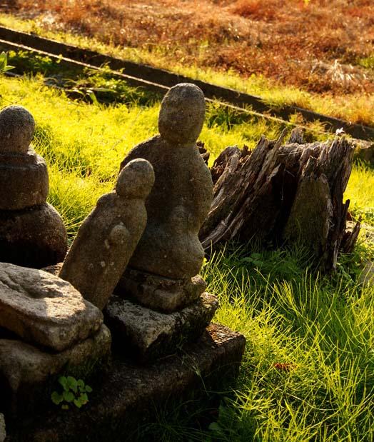 円福寺の石仏 - Ⅳ                 新潟県・長岡市_d0149245_18241993.jpg