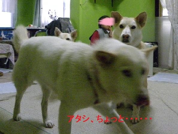 b0201756_201466.jpg