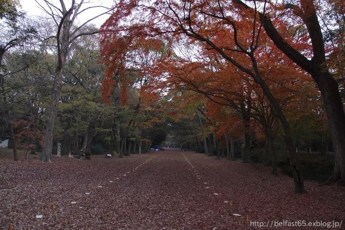 下鴨神社・糺の森_f0095094_237273.jpg