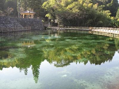 鹿児島県 湧水町の丸池公園♪_b0228113_14241572.jpg