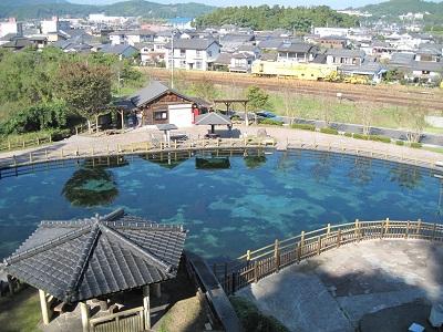 鹿児島県 湧水町の丸池公園♪_b0228113_14250771.jpg