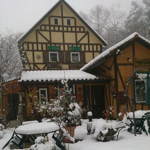 雪、_f0111415_954125.jpg