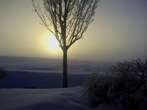 綺麗過ぎる真冬の一日。_f0096216_164839.jpg